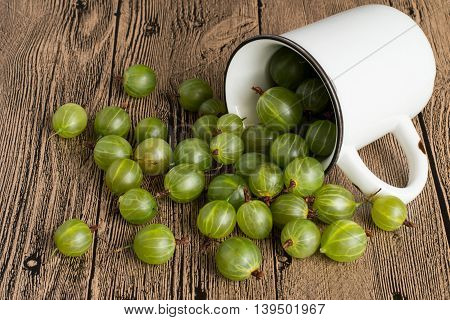 Freshly picked gooseberries got enough sleep from a mug on a wooden table.