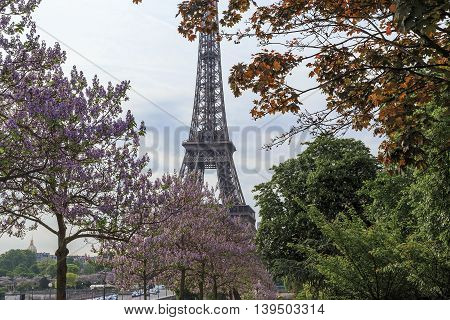 PARIS, FRANCE - MAY 12, 2015: Trocadero Garden is a garden in the English style that took place on both sides of the Palais de Chaillot.