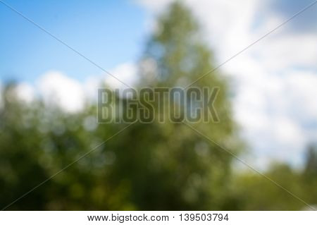 summer landscape with green trees out of focus