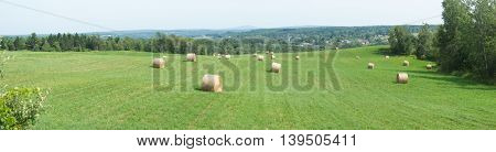 hay bale panoramic green field rural landscape