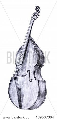 A pencil drawing of a vintage double bass on white background