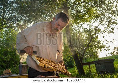 Portrait of Ukrainian peasant hard working in own bee yard