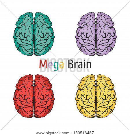 I49 - Brain Science Education-01.eps