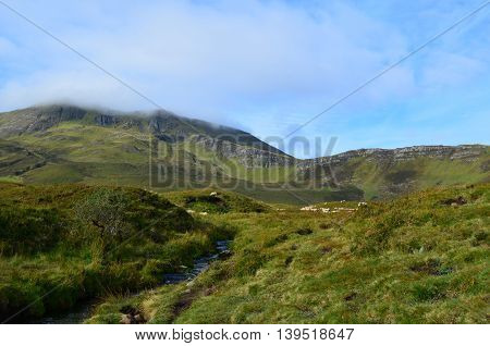 Sheep grazing on this hills of the Scottish Highlands.