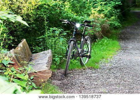 Bike resting next to a bench made out of a tree