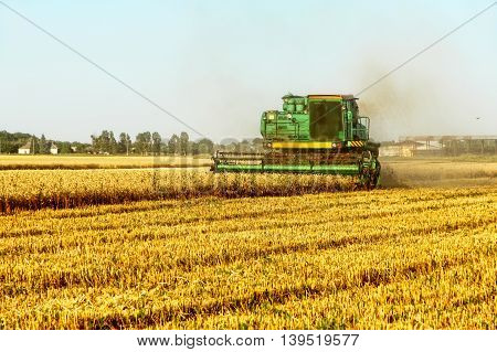 Combine harvester working in golden wheat field.