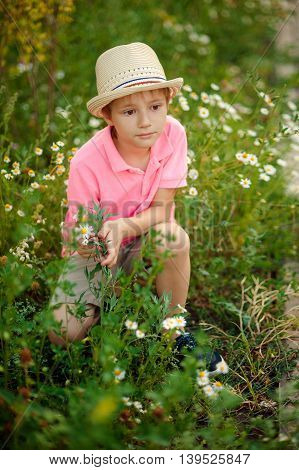 Adorable little blond child with blue eyes laying on the grass with daisies flowers in the park. On warm summer day during school holidays. Kid boy dreaming and smiling.