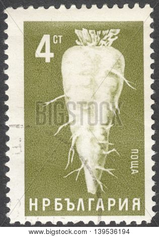 MOSCOW RUSSIA - CIRCA JANUARY 2016: a post stamp printed in BULGARIA shows Beta vulgaris var. altissima beetroot the series