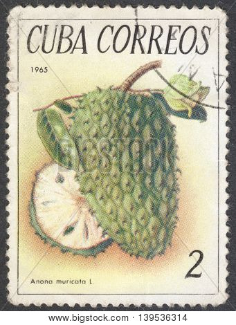 MOSCOW RUSSIA - JANUARY 2016: a post stamp printed in CUBA shows a fruit Annona reticulata the series