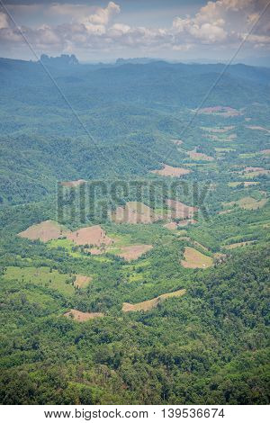 Forest encroachment to plant corn Tak ,Thailand.