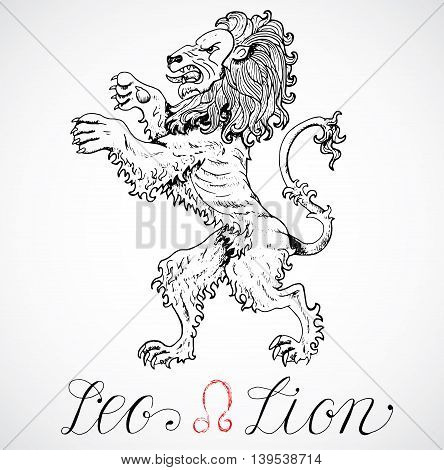 Hand drawn astrological zodiac sign Lion or Leo. Line art vector illustration of engraved horoscope symbol. Heraldic style. Doodle drawing and sketch with calligraphic lettering