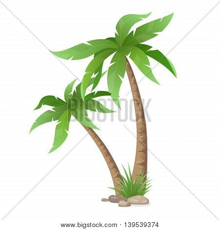 Two palms tree, grass and stones isolated