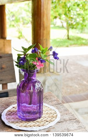 Close-up Flower pots placed on a wooden table