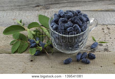 Blue honeysuckle berries in a glass cup on wooden table