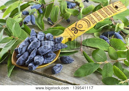 Blue honeysuckle berries in yellow spoon on wooden table with green leaves