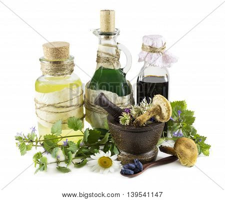 Group of glass bottle with healing herbs, mushrooms and berries, homeopathic still life isolated on white