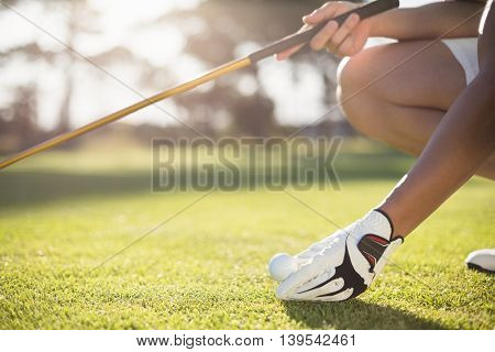 Cropped golfer man placing golf ball on tee while crouching at field