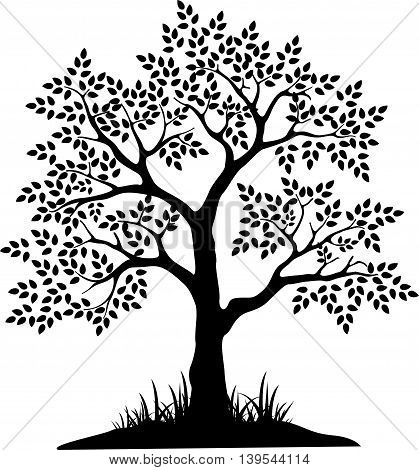 beauty black tree silhouette for your design