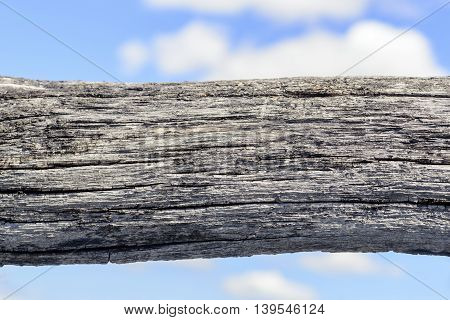Aged Wooden Log And Blue Sky