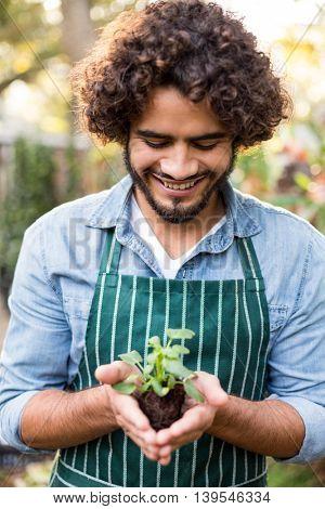 Happy male gardener holding sapling at greenhouse