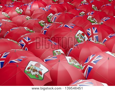 Umbrellas With Flag Of Bermuda
