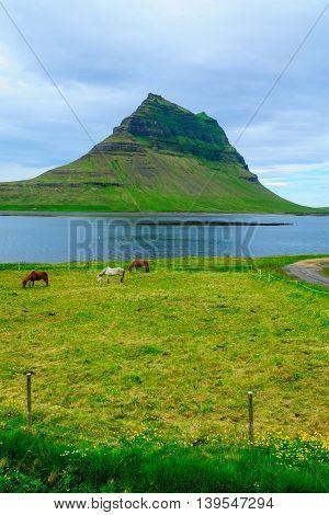 Kirkjufell Mountain In The Snaefellsnes Peninsula