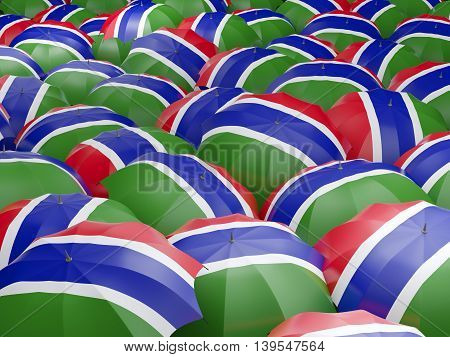 Umbrellas With Flag Of Gambia