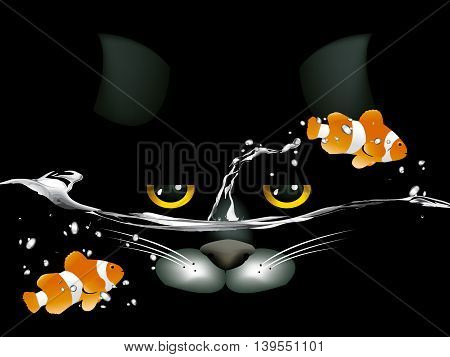Black Cat Looking At Two Clown Fish