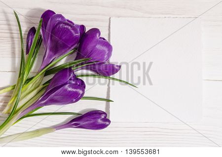 Bouquet From Crocus Flowers With Empty Card For Your Text Isolated On White Wooden Table