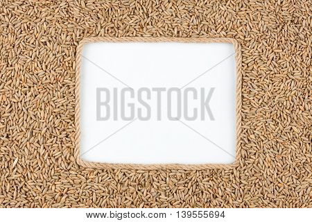 Frame made of rope with rye grains and a white background with space for your text