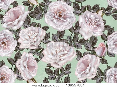 Pattern seamless. Old style. Bouquet of flowers and pastel pink roses. Floral background.