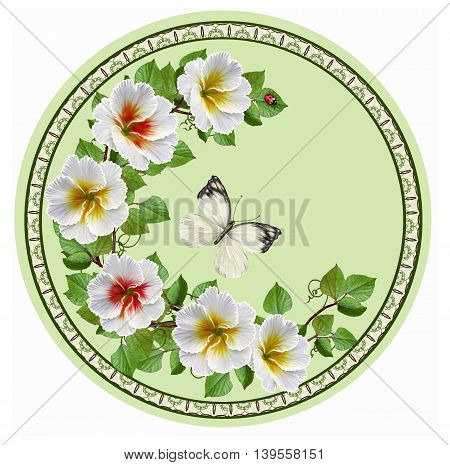 The composition of white primrose and butterfly in the circle. Flower Garland mosaic painting circle. Round form.