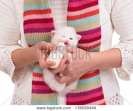 Woman feeding little kitten with bottle of milk over white sweater background