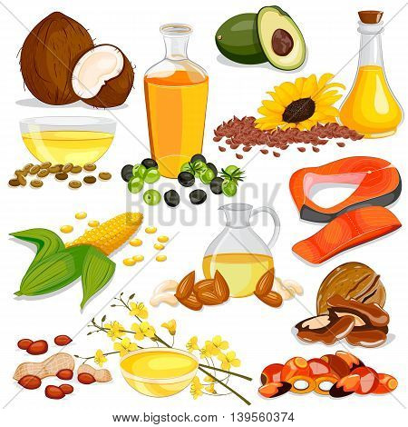vector illustration of Different Sources of Edible Oil Collection