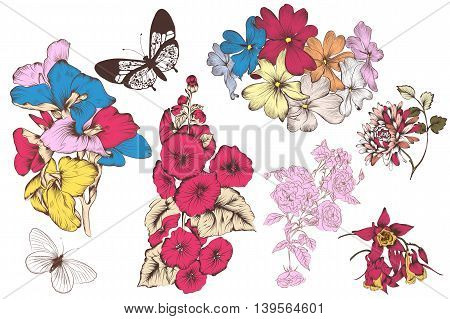 Vector collection of colorful hand drawn flowers in engraved style, vector