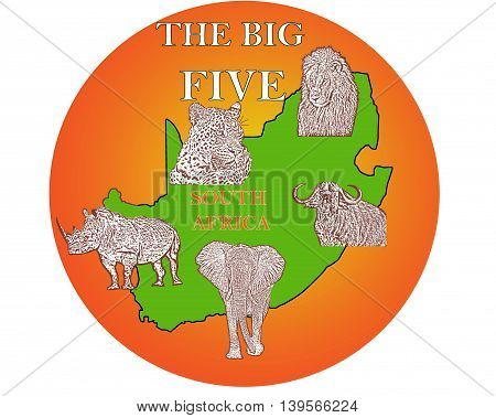 The Big Five,Lion,Leopard, Elephant, Rhino And The Cape Buffalo, South Africa 03