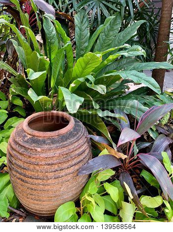 Beautiful Clay Pottery Decorative Vase with Epipremnum aureum Plants and Cordyline Fruticosa Plants in A Garden.