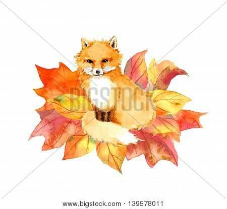 Cute fox in autumn leaves. Watercolor drawing