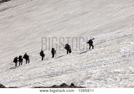 Mountain Climbers Hiking Up Mt Rainier