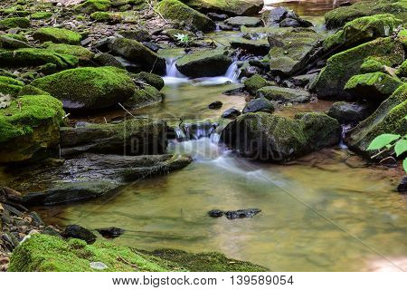Small Mountain Stream in the Eastern United States.