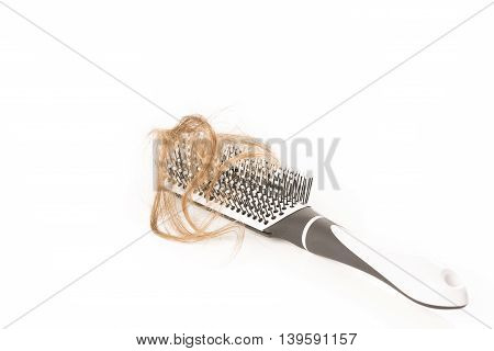 Close-up of hair loss, long hair, alopecia on white background with brush, comb nobody