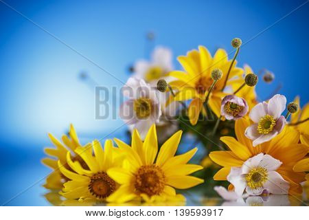 Summer bouquet of yellow daisies on a blue background