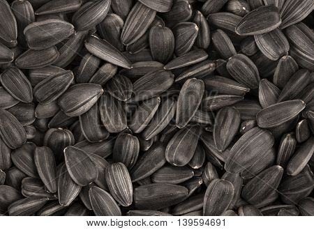Black sunflower seeds. For texture or background