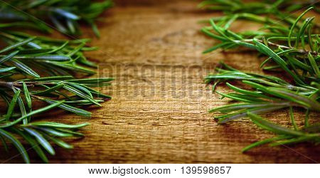 Fresh sprigs of rosemary on a wooden background