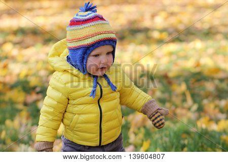 Portrait of baby boy in autumn park