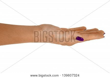 Open hand giving anything middle-aged woman's skin magenta manicure. Isolated on white background.