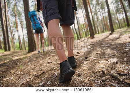 Young tourists are hiking through forest. Low angle close-up of male legs