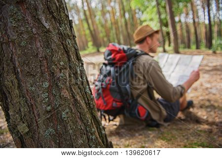Confident young man is reading a touristic map with concentration. He is sitting on ground in forest. Focus on tree
