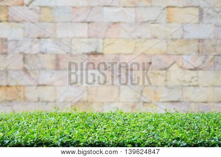 Top Of Flat Plant Platform And Blurred Stone Wall