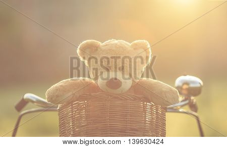 Lovely Brown Teddy Bear In Rattan Basket On Red Vintage Bike In Green Field With Lens Flare. Warm To